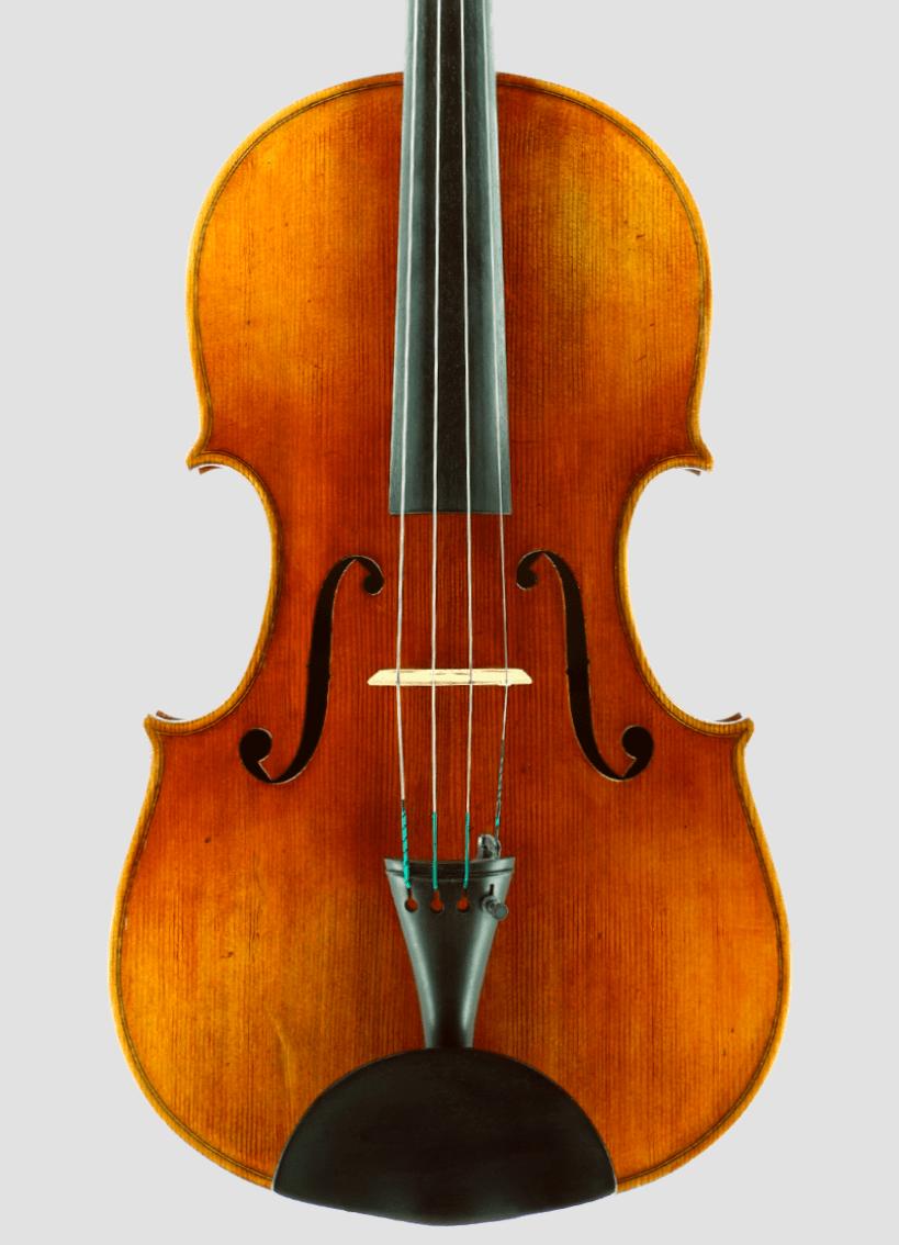Viola Nicolas Blaga